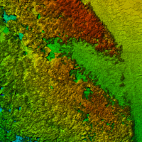 Stereophotogrammetrische 3D-Punktwolke eines Waldgebietes (Nadir)