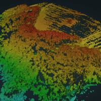 Stereophotogrammetrische 3D-Punktwolke eines Waldgebietes (Vogelperspektive)