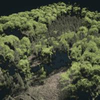 Ergebnis der Befliegung eines Waldes mit einer Multikopter-Drohne aus 100m Höhe