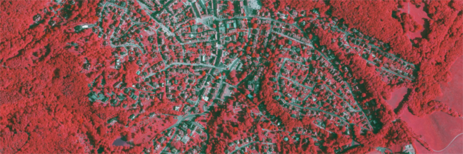 Vegetationsindex (NDVI)